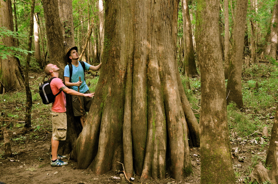 Visiting Lake Murray Country, Lake Murray, Conagree National Park, South Carolina Travel, Family Travel