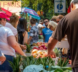 Soda City Market, Columbia South Carolina, Lake Murray Country Events
